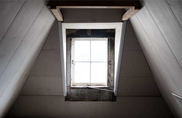Window Attic